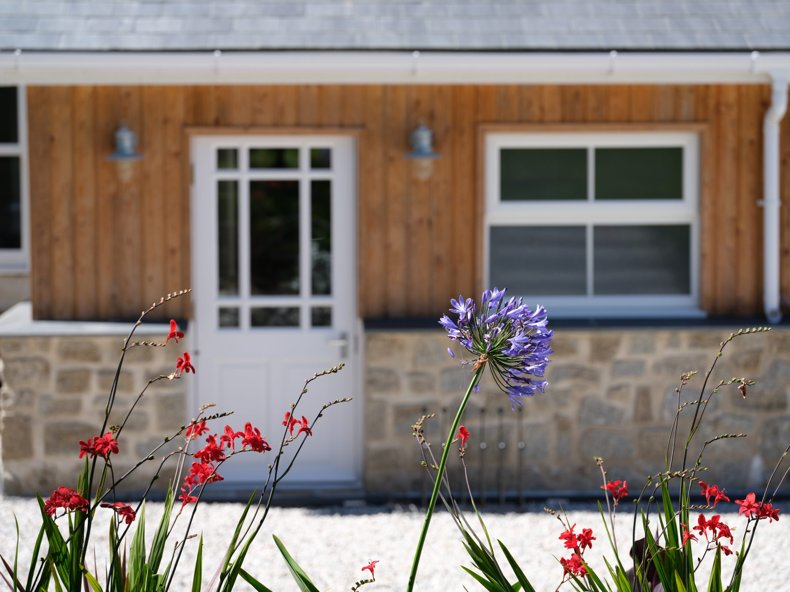 Drym House: Rear Entrance